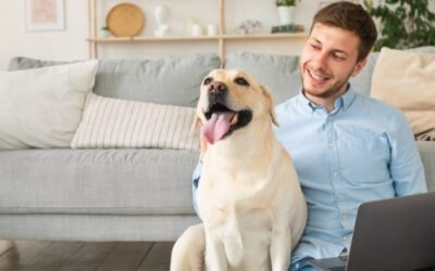 5 Pet Sitter and Dog Walker Safety Tips